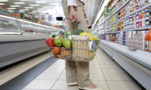 Woman with basket in supermarket, low section